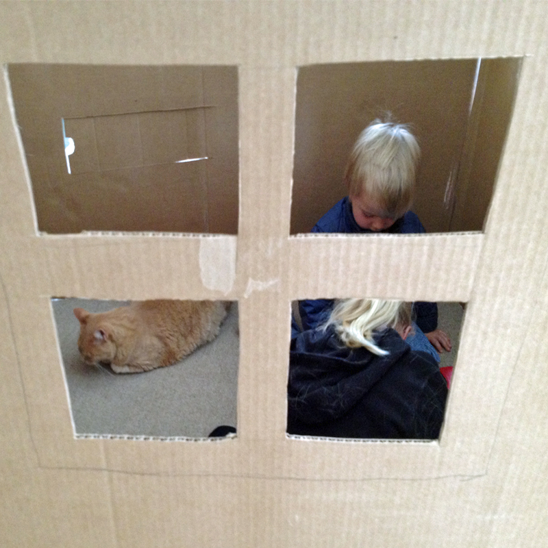 Kids-and-cat-in-house